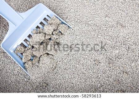 Clumping Bentonite  Cat Litter on blue scoop - stock photo