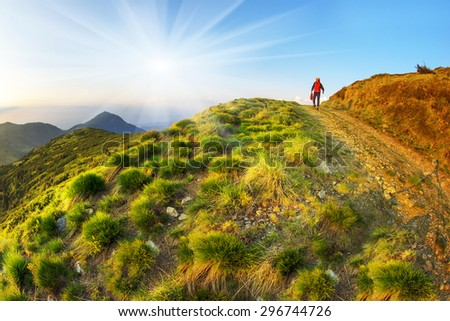 clumps of grass along the road resemble fairy cheerful hedgehogs climbing along the mountain road to the top of the Alps on the background of sunset. Beautiful colors picturesque. - stock photo