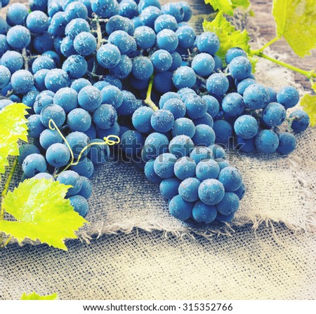 Cluster of Blue Grapes on Old Wooden Background. Vintage Style and Toned Image - stock photo