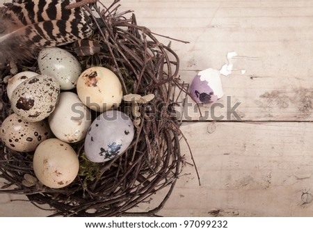 Clutch of speckled Easter eggs in a nest constructed of interwoven twigs with copyspace - stock photo