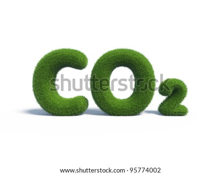 co2 green grass in the form of letters - stock photo