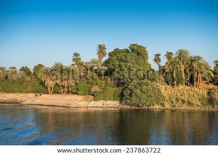 Coast and nature on the coast of the Nile rive in Egypt