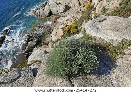 "Coast near Santa Teresa di Gallura - background, northern Sardinia, Italy - ""Costa Smeralda"" famous tourist area. - stock photo"