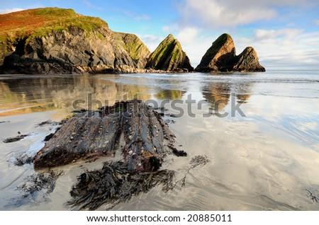 Coast of Ireland - stock photo