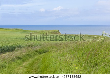 Coastal footpath at Flamborough Head, North Yorkshire, UK hiking and walking holidays and vacations - stock photo