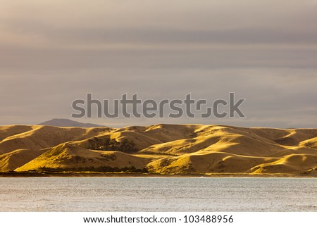 Coastal grassland hills turned dry and yellow by drought, South Island, New Zealand - stock photo