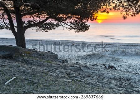 Coastal landscape in Saulkrasti resort village, Latvia, Europe - stock photo