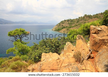 Coastal landscape of Mediterranean Sea with a pine tree and red rocky formations. Landscape of sea and wild nature surrounded by red rocks that contrasts with the azure blue of the Mediterranean - stock photo