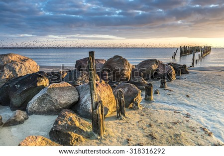 Coastal landscape with migrating flocks of swimming birds on horizon and old broken pier as foreground, Baltic Sea, Latvia, Europe - stock photo