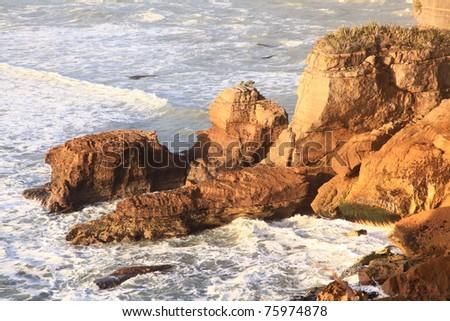 coastal line canyon at west coast of New Zealand - stock photo