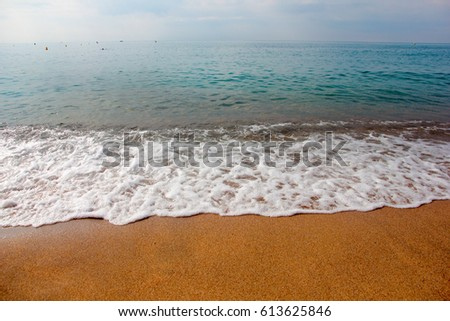 Coastal line of a sandy beach and waves on the sea surface