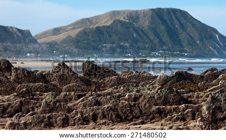 coastal New Zealand scene with rows of rocks exposed at low tide  - stock photo