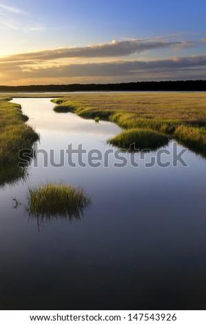 Coastal Salt Marsh at Sunrise - stock photo