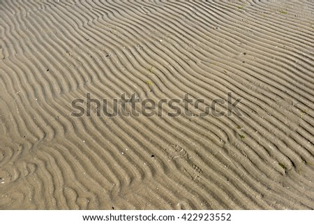 coastal sea sand as background - stock photo
