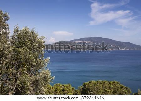 Coastline near Lacona village, island of Elba, Tuscany, Italy, Europe - stock photo