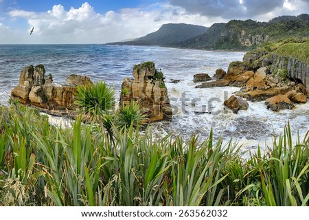 Coastline near Pancake Rocks, New Zealand - HDR panorama - stock photo