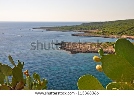 Coastline of Porto Selvaggio, in Apulia. Italy - stock photo