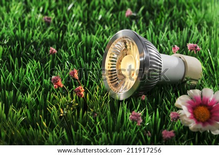 COB-LED on a lawn in the evening  - stock photo