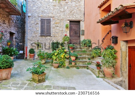 Cobbled patio with flowers in the old village Lyuseram, France