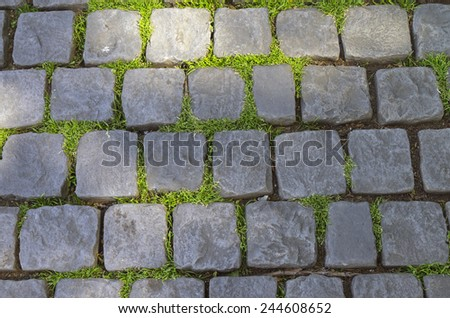 Cobbled road. Grass makes its way through the cobblestone pavement. - stock photo