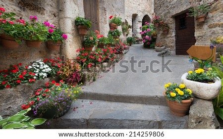 cobblestone street with flowers