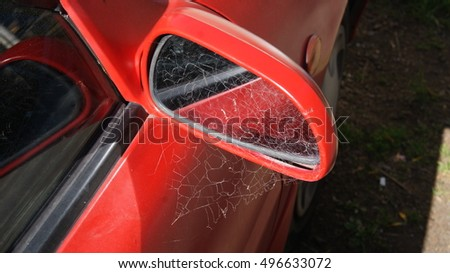 Cobwebs on a wing mirror