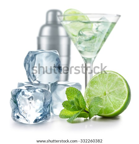 Cocktail ingredients on white background
