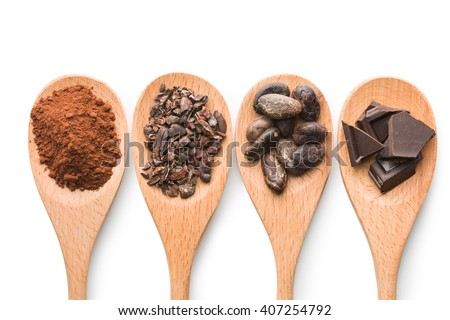 cocoa and dark chocolate in wooden spoons on white background - stock photo