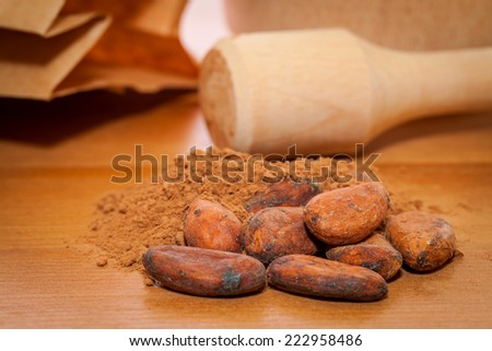 cocoa beans and cocoa powder on the table  - stock photo