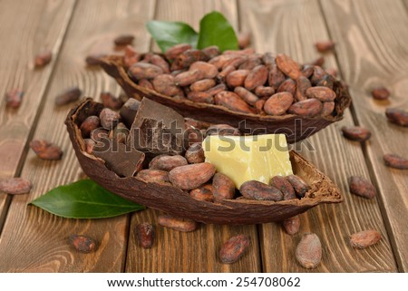Cocoa beans, cocoa butter and cocoa mass on brown background - stock photo