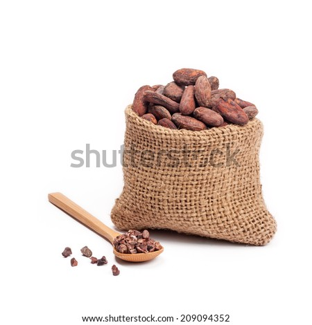 Cocoa beans in burlap bag - stock photo