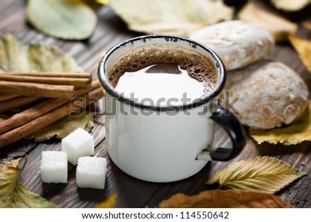 Cocoa drink - stock photo