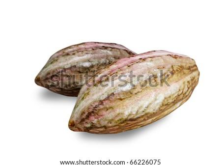 Cocoa fruit - stock photo