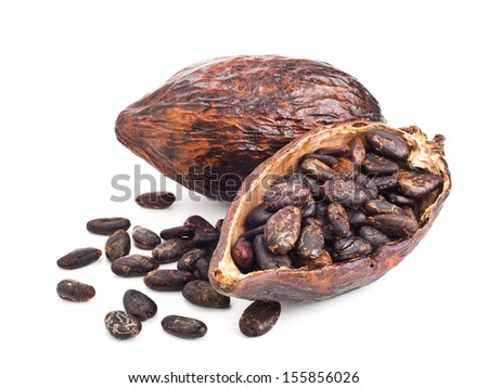 cocoa pod and beans isolated on a white background - stock photo