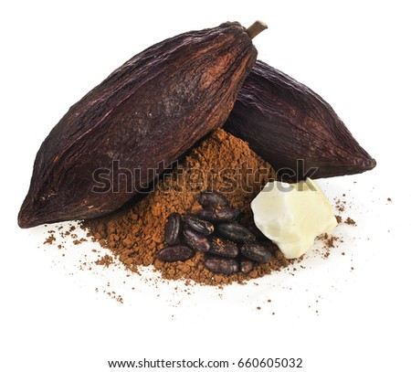 cocoa pod beans butter and cacao powder isolated on a white background