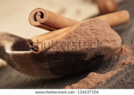 Cocoa powder and cinnamon in wooden spoon - stock photo