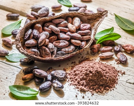 Cocoa powder and cocao beans on the wooden table. - stock photo