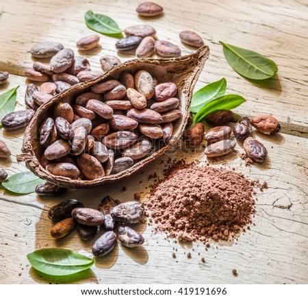 Cocoa powder and cocoa beans on the wooden table. - stock photo