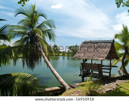 Coconut and small hut lake side in Buddhamonthon, Nakhon Pathom, Thailand