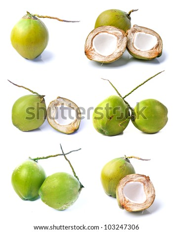 Coconut collection - stock photo