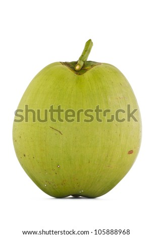 Coconut Fruit on white background.