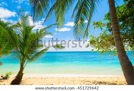 Coconut Getaway Exotic Paradise  - stock photo