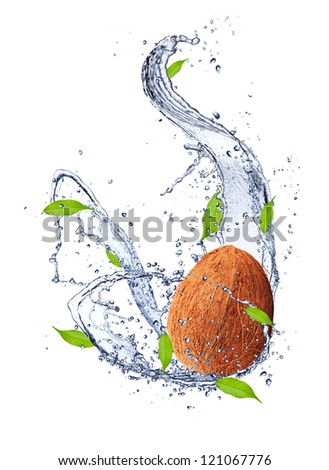 Coconut in water splash, isolated on white background - stock photo