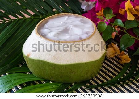 Coconut Jelly asian dessert - stock photo