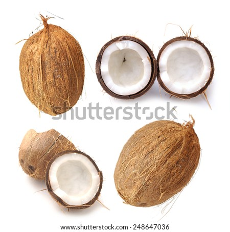 coconut on white with shadow - stock photo