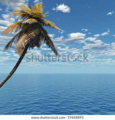 Coconut palm and blue sky with clouds.