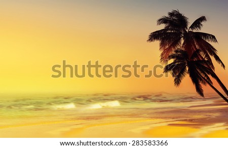 Coconut palm tree and paradise tropical beach. Design background. - stock photo