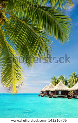 Coconut palm tree leaves over Tropical ocean with bungalows - stock photo