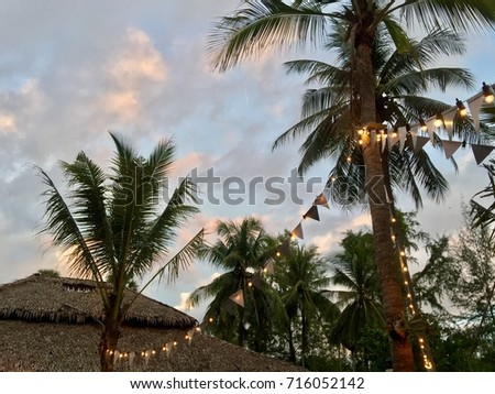 Coconut Palm Tree with Ornamental Light in the Early Evening Beautiful Twilight Sky
