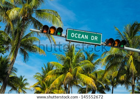 Coconut palm trees along Ocean Drive in Miami Beach. - stock photo